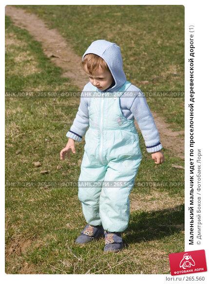 Маленький мальчик идет по проселочной деревенской дороге (1), фото № 265560, снято 20 апреля 2008 г. (c) Дмитрий Боков / Фотобанк Лори