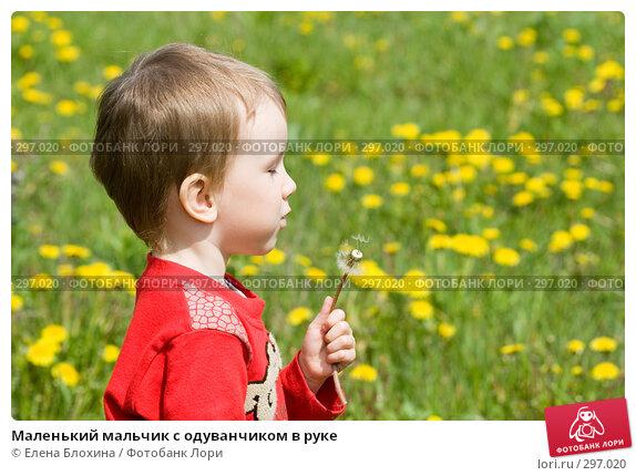 Маленький мальчик с одуванчиком в руке, фото № 297020, снято 18 мая 2008 г. (c) Елена Блохина / Фотобанк Лори