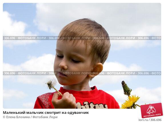 Маленький мальчик смотрит на одуванчик, фото № 306696, снято 27 мая 2008 г. (c) Елена Блохина / Фотобанк Лори
