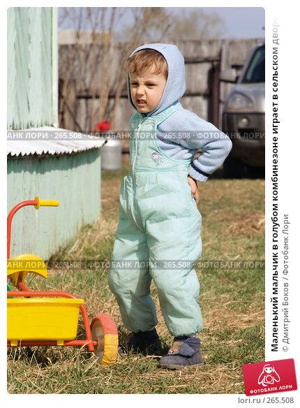 Маленький мальчик в голубом комбинезоне играет в сельском дворе с трехколесным велосипедом (9), фото № 265508, снято 20 апреля 2008 г. (c) Дмитрий Боков / Фотобанк Лори