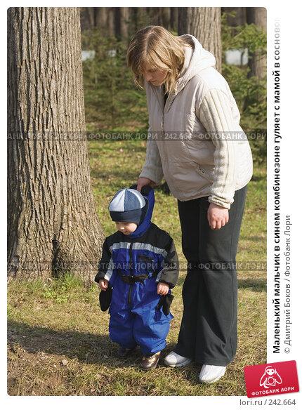 Маленький мальчик в синем комбинезоне гуляет с мамой в сосновом лесу, фото № 242664, снято 30 апреля 2006 г. (c) Дмитрий Боков / Фотобанк Лори