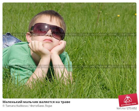 Маленький мальчик валяется на траве, фото № 273652, снято 5 мая 2008 г. (c) Tamara Kulikova / Фотобанк Лори