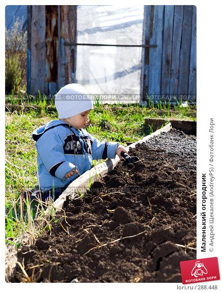 Маленький огородник, фото № 288448, снято 10 мая 2008 г. (c) Андрей Щекалев (AndreyPS) / Фотобанк Лори