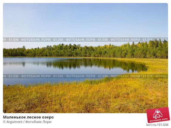 Маленькое лесное озеро, фото № 61036, снято 10 августа 2006 г. (c) Argument / Фотобанк Лори