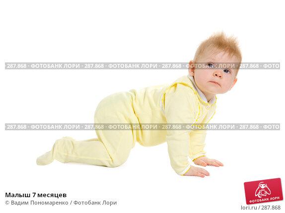 Малыш 7 месяцев, фото № 287868, снято 29 февраля 2008 г. (c) Вадим Пономаренко / Фотобанк Лори