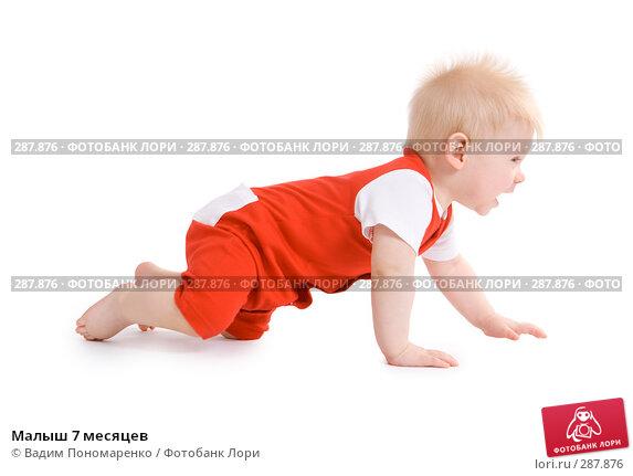 Малыш 7 месяцев, фото № 287876, снято 29 февраля 2008 г. (c) Вадим Пономаренко / Фотобанк Лори