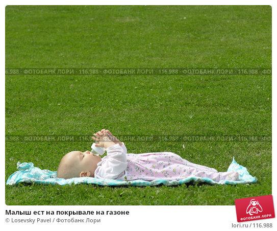 Малыш ест на покрывале на газоне, фото № 116988, снято 31 июля 2005 г. (c) Losevsky Pavel / Фотобанк Лори