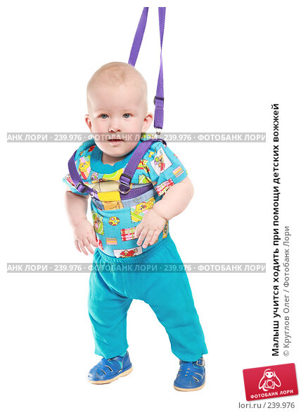 Малыш учится ходить при помощи детских вожжей, фото № 239976, снято 31 марта 2008 г. (c) Круглов Олег / Фотобанк Лори