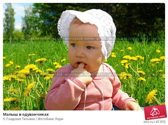 Малыш в одуванчиках, фото № 47972, снято 28 мая 2007 г. (c) Гладских Татьяна / Фотобанк Лори
