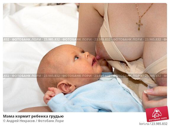Купить «Мама кормит ребенка грудью», фото № 23985832, снято 7 января 2015 г. (c) Андрей Некрасов / Фотобанк Лори
