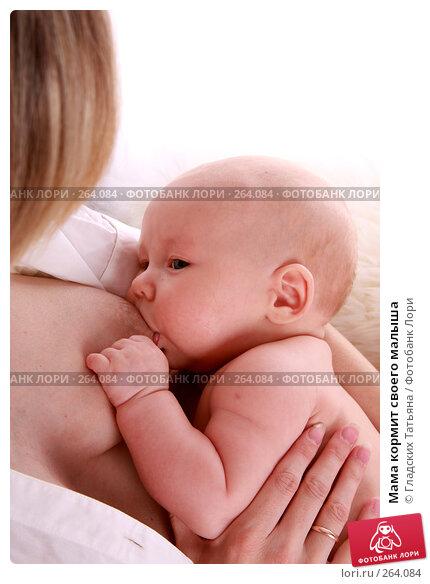 Мама кормит своего малыша, фото № 264084, снято 24 апреля 2007 г. (c) Гладских Татьяна / Фотобанк Лори