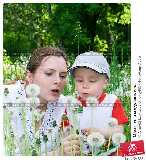 Мама, сын и одуванчики, фото № 39888, снято 7 июня 2006 г. (c) Андрей Щекалев (AndreyPS) / Фотобанк Лори