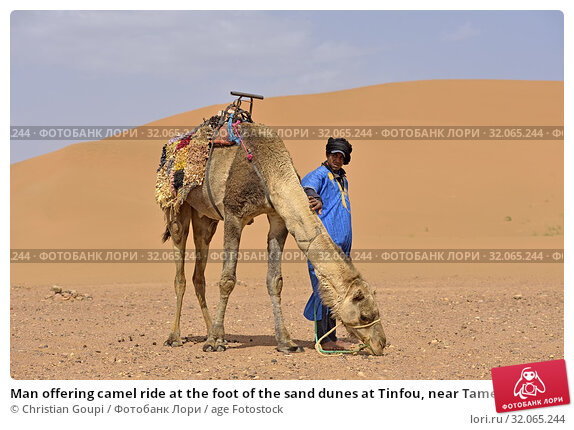 Man offering camel ride at the foot of the sand dunes at Tinfou, near Tamegroute, Draa River valley, Province of Zagora, Region Draa-Tafilalet, Morocco, North West Africa. (2019 год). Редакционное фото, фотограф Christian Goupi / age Fotostock / Фотобанк Лори