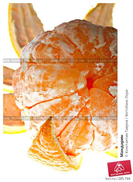 Мандарин, фото № 285744, снято 5 апреля 2008 г. (c) Константин Тавров / Фотобанк Лори