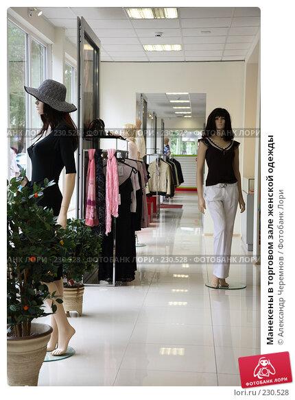 Манекены в торговом зале женской одежды, фото № 230528, снято 1 августа 2007 г. (c) Александр Черемнов / Фотобанк Лори