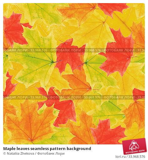 Купить «Maple leaves seamless pattern background», фото № 33968576, снято 5 июля 2020 г. (c) Nataliia Zhekova / Фотобанк Лори