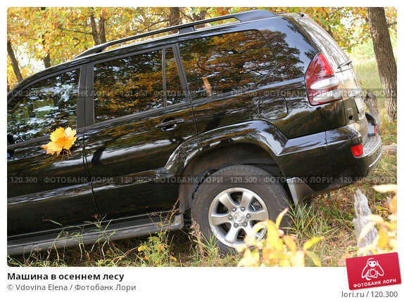 Купить «Машина в осеннем лесу», фото № 120300, снято 7 октября 2007 г. (c) Vdovina Elena / Фотобанк Лори