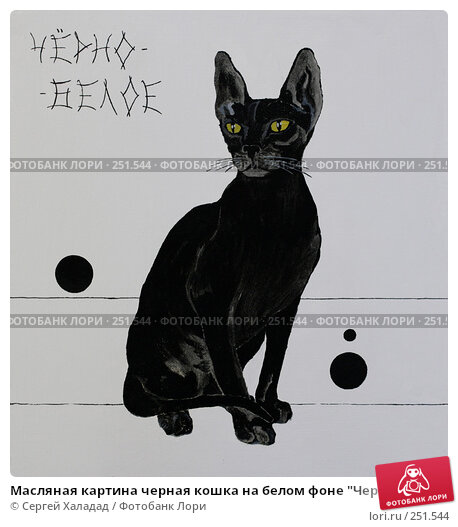 """Масляная картина черная кошка на белом фоне """"Черно-белое"""", иллюстрация № 251544 (c) Сергей Халадад / Фотобанк Лори"""