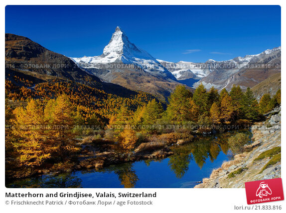 Купить «Matterhorn and Grindjisee, Valais, Switzerland», фото № 21833816, снято 12 октября 2015 г. (c) age Fotostock / Фотобанк Лори