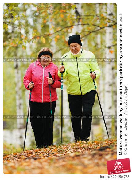 Купить «Mature woman walking in an autumn park during a scandinavian walk», фото № 29150788, снято 30 сентября 2018 г. (c) Константин Шишкин / Фотобанк Лори