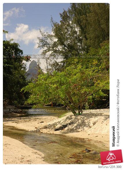 Купить «Маврикий», фото № 231300, снято 25 августа 2007 г. (c) Андрей Каплановский / Фотобанк Лори