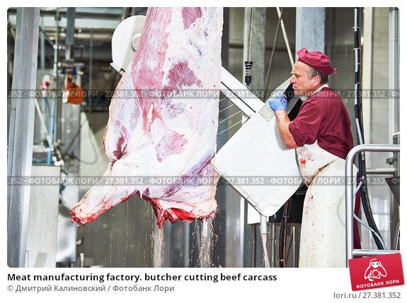 Купить «meat manufacturing factory. butcher cutting beef carcass», фото № 27381352, снято 22 августа 2017 г. (c) Дмитрий Калиновский / Фотобанк Лори