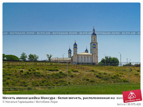 Купить «Мечеть имени шейха Мансура - белая мечеть, расположенная на  живописном месте при въезде в Грозный с юго-западной стороны», фото № 30975428, снято 2 июня 2019 г. (c) Наталья Гармашева / Фотобанк Лори