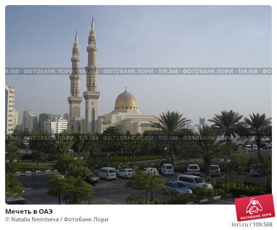 Купить «Мечеть в ОАЭ», эксклюзивное фото № 109568, снято 20 августа 2005 г. (c) Natalia Nemtseva / Фотобанк Лори
