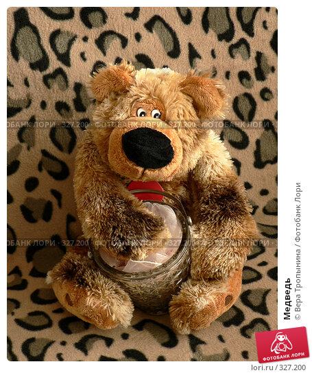 Медведь, фото № 327200, снято 22 февраля 2017 г. (c) Вера Тропынина / Фотобанк Лори