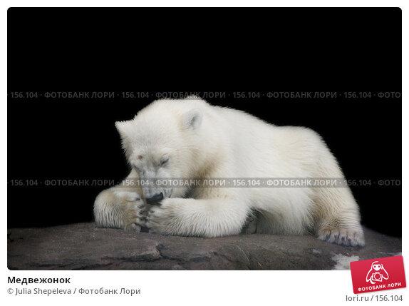 Медвежонок, фото № 156104, снято 13 июля 2006 г. (c) Julia Shepeleva / Фотобанк Лори