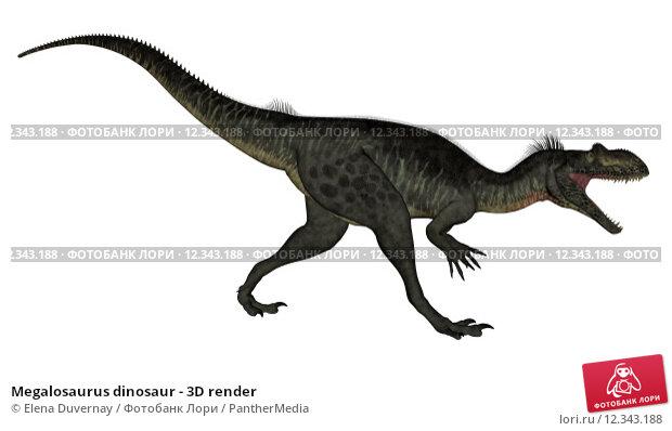 Купить «Megalosaurus dinosaur - 3D render», фото № 12343188, снято 22 сентября 2019 г. (c) PantherMedia / Фотобанк Лори