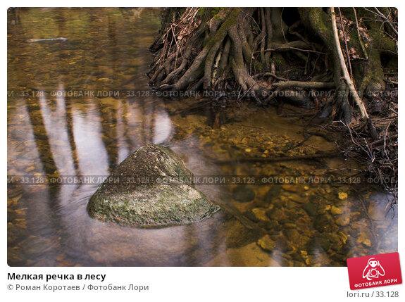 Мелкая речка в лесу, фото № 33128, снято 14 апреля 2007 г. (c) Роман Коротаев / Фотобанк Лори