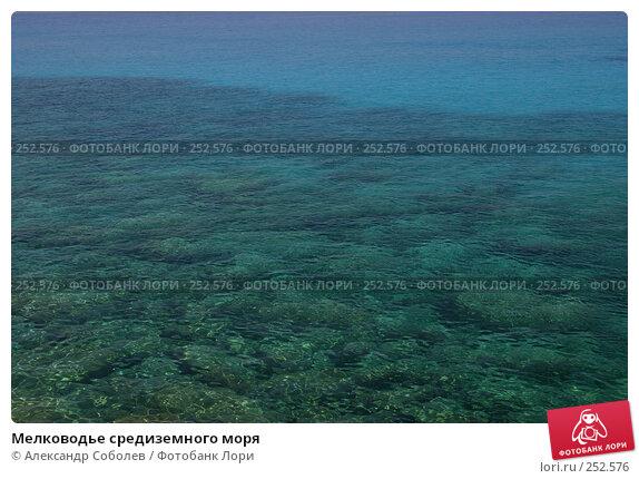 Мелководье средиземного моря, фото № 252576, снято 21 августа 2006 г. (c) Александр Соболев / Фотобанк Лори