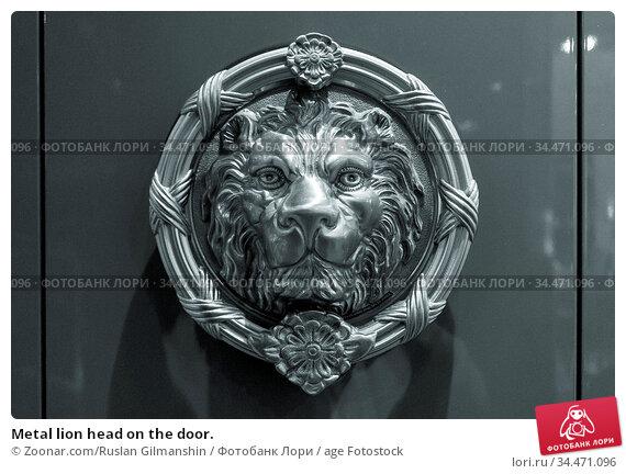 Metal lion head on the door. Стоковое фото, фотограф Zoonar.com/Ruslan Gilmanshin / age Fotostock / Фотобанк Лори