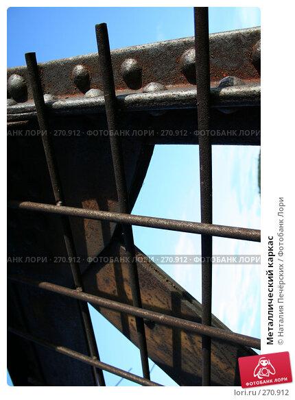 Металлический каркас, фото № 270912, снято 21 июля 2007 г. (c) Наталия Печёрских / Фотобанк Лори