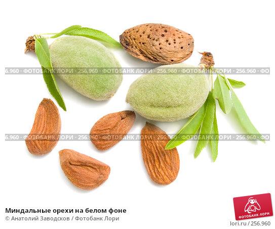 Миндальные орехи на белом фоне, фото № 256960, снято 19 мая 2007 г. (c) Анатолий Заводсков / Фотобанк Лори