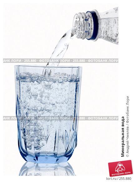 Минеральная вода, фото № 255880, снято 12 марта 2008 г. (c) Андрей Чмелёв / Фотобанк Лори