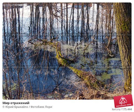 Мир отражений, фото № 175444, снято 14 января 2007 г. (c) Юрий Брыкайло / Фотобанк Лори