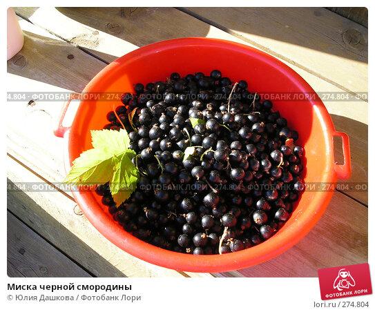 Миска черной смородины, фото № 274804, снято 1 января 2003 г. (c) Юлия Дашкова / Фотобанк Лори