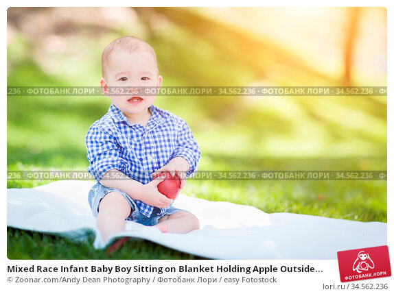 Mixed Race Infant Baby Boy Sitting on Blanket Holding Apple Outside... Стоковое фото, фотограф Zoonar.com/Andy Dean Photography / easy Fotostock / Фотобанк Лори
