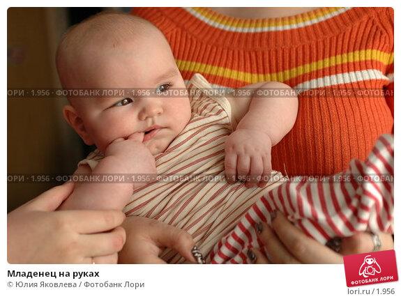 Младенец на руках, фото № 1956, снято 5 апреля 2006 г. (c) Юлия Яковлева / Фотобанк Лори
