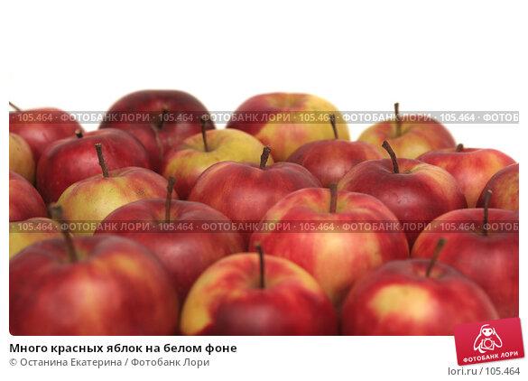 Много красных яблок на белом фоне, фото № 105464, снято 10 октября 2007 г. (c) Останина Екатерина / Фотобанк Лори