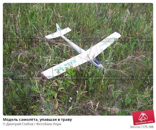 Купить «Модель самолёта, упавшая в траву», фото № 175188, снято 10 июня 2007 г. (c) Дмитрий Глебов / Фотобанк Лори