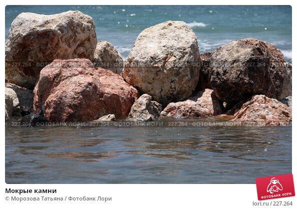 Купить «Мокрые камни», фото № 227264, снято 22 октября 2007 г. (c) Морозова Татьяна / Фотобанк Лори