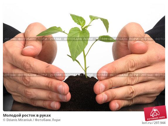 Молодой росток в руках, фото № 297944, снято 30 апреля 2008 г. (c) Dzianis Miraniuk / Фотобанк Лори