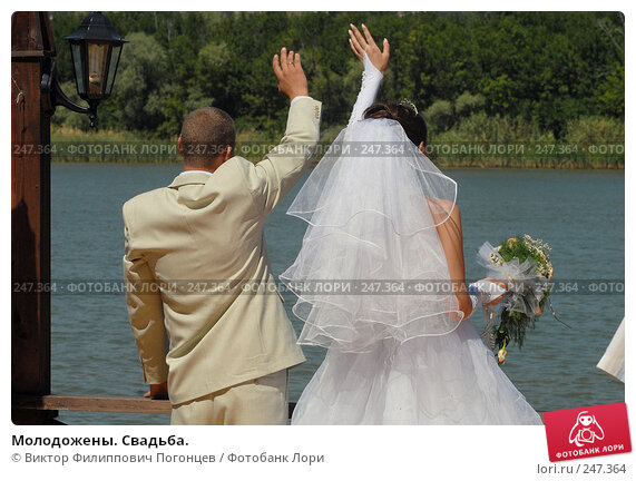 Купить «Молодожены. Свадьба.», фото № 247364, снято 22 июля 2006 г. (c) Виктор Филиппович Погонцев / Фотобанк Лори