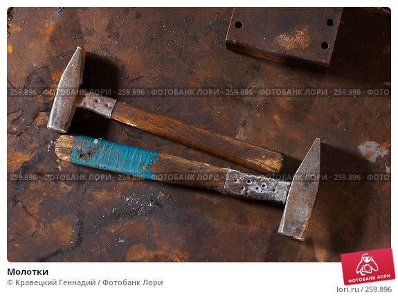 Купить «Молотки», фото № 259896, снято 8 октября 2005 г. (c) Кравецкий Геннадий / Фотобанк Лори