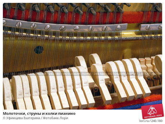 Молоточки, струны и колки пианино, фото № 240180, снято 23 июля 2017 г. (c) Уфимцева Екатерина / Фотобанк Лори