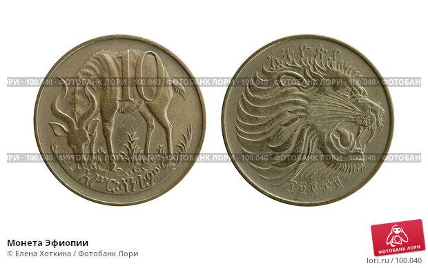 Монета Эфиопии, фото № 100040, снято 20 января 2017 г. (c) Елена Хоткина / Фотобанк Лори