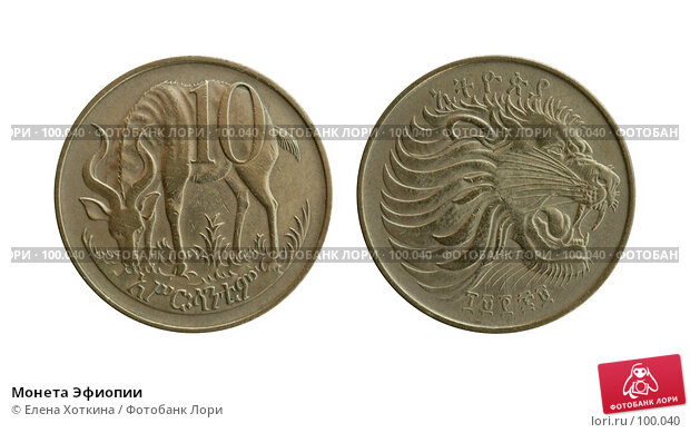 Купить «Монета Эфиопии», фото № 100040, снято 18 марта 2018 г. (c) Елена Хоткина / Фотобанк Лори
